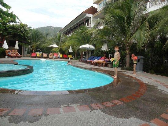 Koh Tao Simple Life Resort : La Piscine