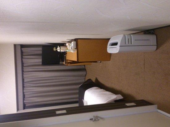 Hotel Villa Fontaine Hamamatsucho: ドアから見た部屋
