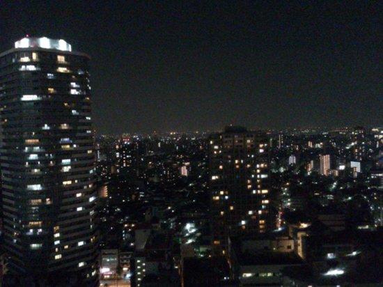 Sunshine City Prince Hotel : 夜景