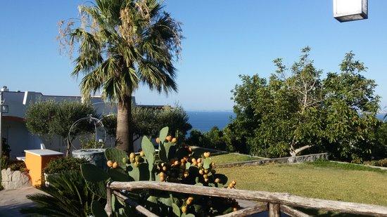 Poggio Aragosta Hotel & Spa: parco