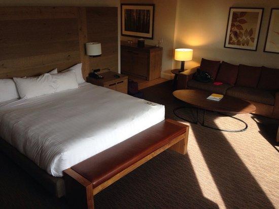 Hyatt Regency Lake Tahoe Resort, Spa and Casino: beautiful room with an amazing view