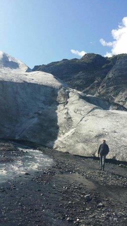 Seward Windsong Lodge: Exit Glacier op 7 miles