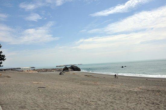 Katsurahama Beach: 桂浜