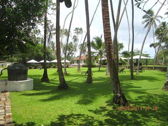 Paradise Road The Villa Bentota: The territory of the hotel