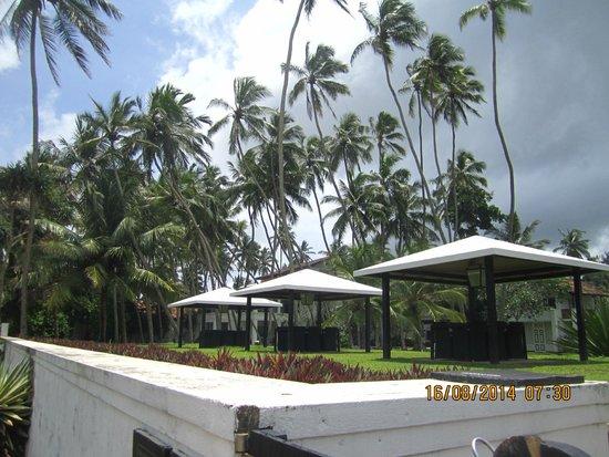 Paradise Road The Villa Bentota: The territoty of the hotel
