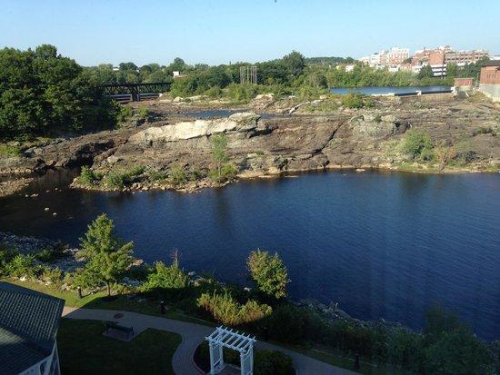 Hilton Garden Inn Auburn Riverwatch : view of the falls
