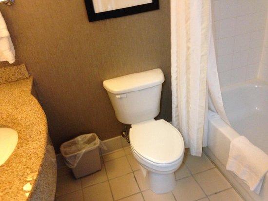 Hilton Garden Inn Auburn Riverwatch : bathroom