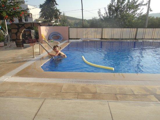 Apollon Hotel: бассейн