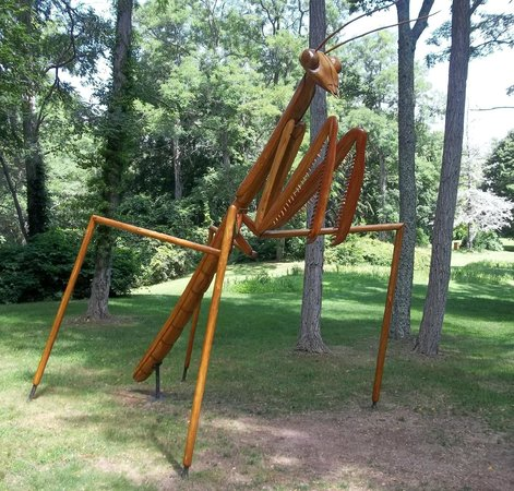 Heritage Museums & Gardens: giant bug art scuptures