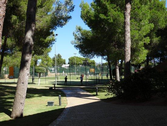 Vell Mari Hotel & Resort: Sports area