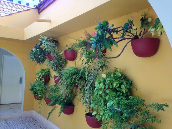 Hotel San Martin Cartagena: Jardim no interior do hotel