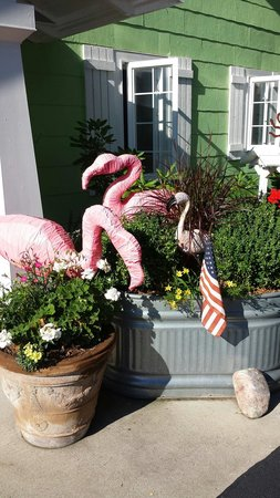 The Pines Motor Lodge: Love the flamingos.