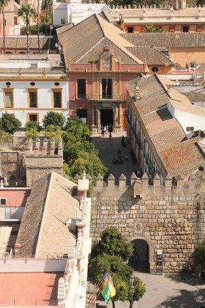 Torre Giralda: La Giralda. Vista del alcazar