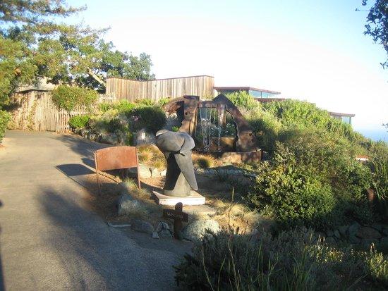Post Ranch Inn: Sierra Mar hidden from view