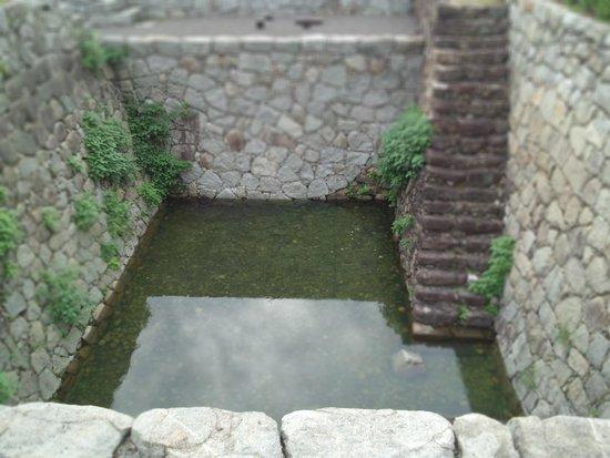 Matsuyama Castle Ninomaru Historical Garden: 大井戸遺構