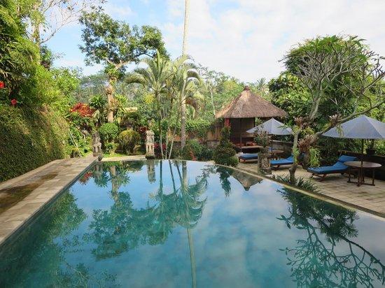 Alam Indah : Pool
