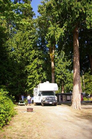 Willingdon Beach Campsite: the RV pitch