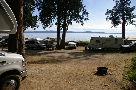 Willingdon Beach Campsite: View from RV pitch