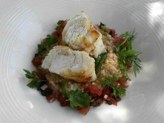 Restaurant Les Bories : La lotte  Rôtie, petit épeautre de Sault en risotto au vieux parmesan,