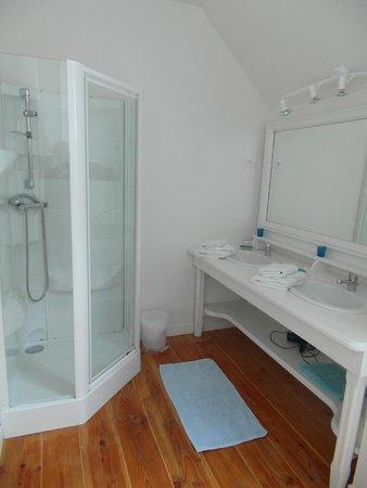 Chateau de Flottemanville : Il bagno - la doccia