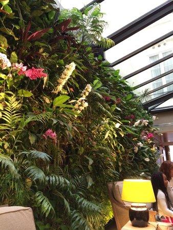 Hotel Pas de Calais: 朝食のとれるフロント
