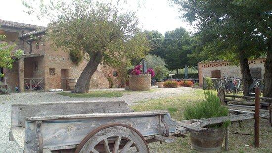 Vista del ristorante con piscina nel giardino foto di casa di