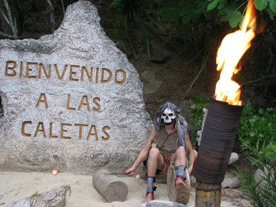 Rhythms of the Night by Vallarta Adventures: Welcome tot the Island