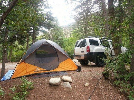 Elk Creek Campground: Our campsite