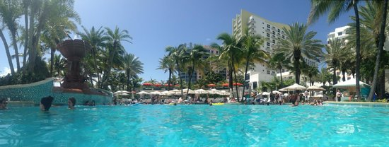 Loews Miami Beach Hotel: Pool view