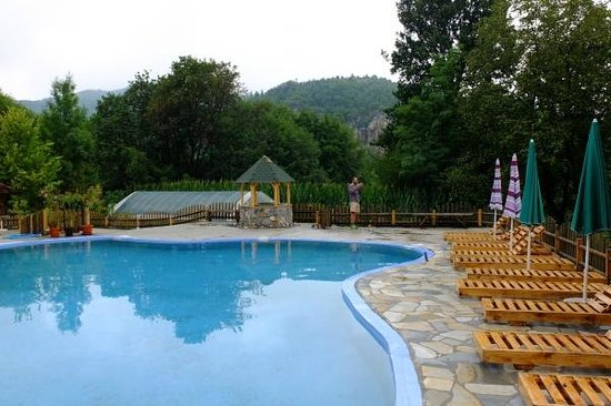 Domacinstvo Milojevic: The swimming pool