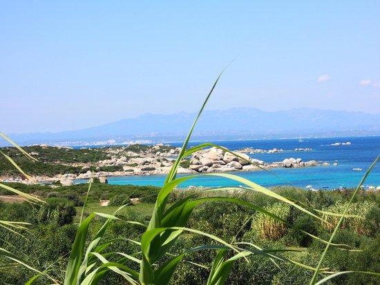 Resort Valle Dell'Erica Thalasso & Spa: vista dalla camera