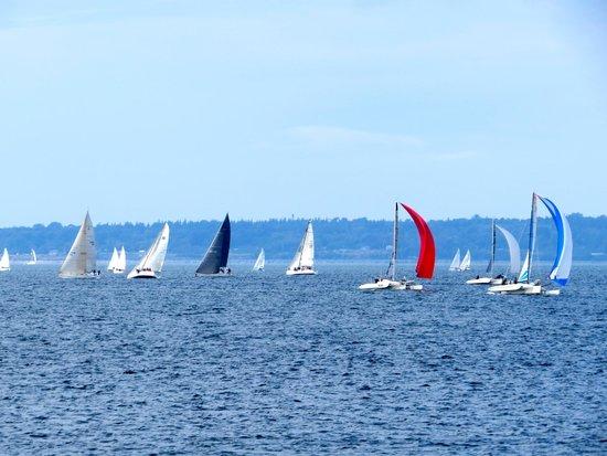 South Bay Trail : Sailing