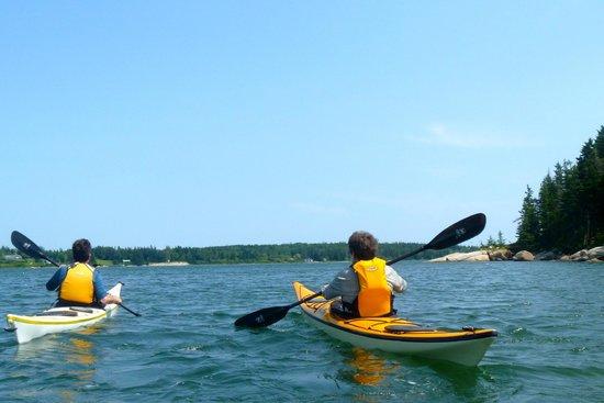 Driftwood Kayak: New horizons