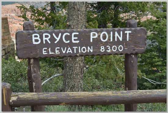 Bryce Canyon: Highest point
