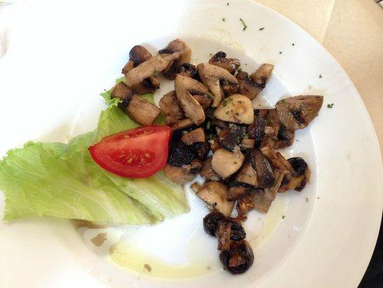 Donatello : Mushrooms - starter
