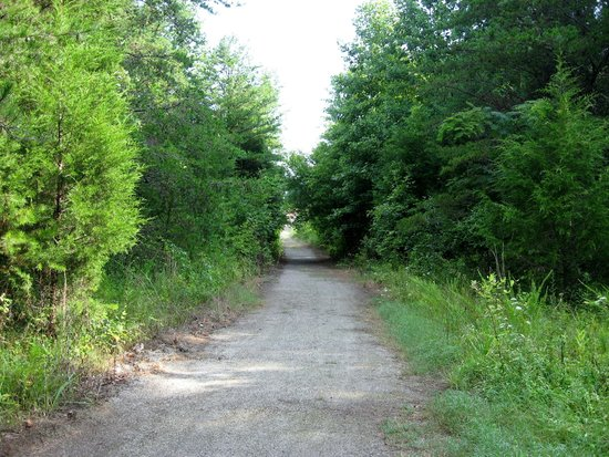 Smith River Sports Complex: Trail Leading Up From River