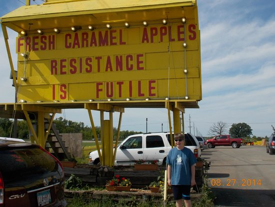 Jim's Apple Farm: And fresh apple pies too!