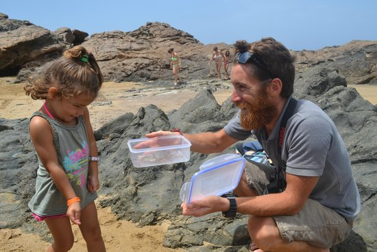 Cross Island: découverte de crabe