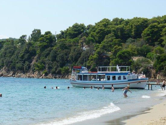 Villa Apollon Skiathos: Transport to town from Achladies beach