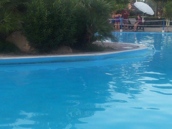 Fiesta Hotel Garden Beach: IGIENE BORDO PISCINA
