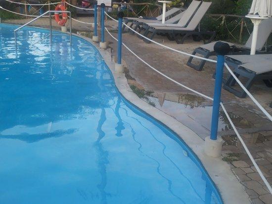 Fiesta Hotel Garden Beach : ERBETTA BORDO PISCINA