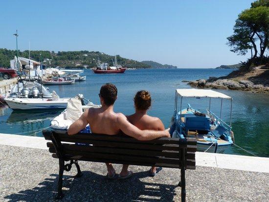 Villa Apollon Skiathos: Skathos harbour