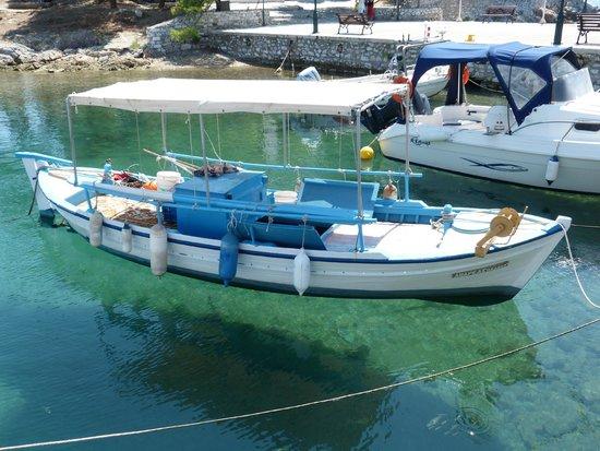 Villa Apollon Skiathos: Skiathos harbour....how clear is the water !!