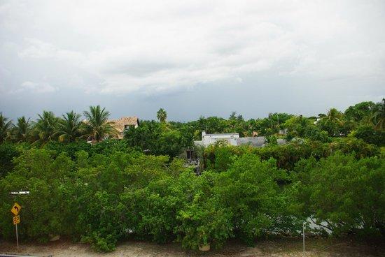 Freehand Miami: vue de notre chambre au 3rd floor donnant sur indian creek drive.