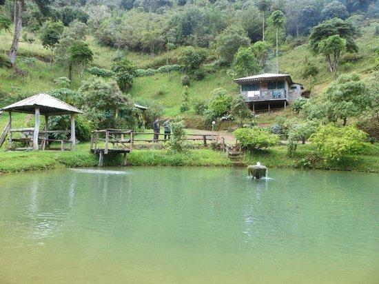 Las Cataratas Lodge