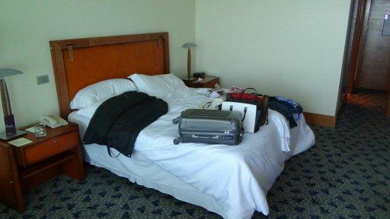 Sheraton Miramar Hotel & Convention Center: habitacion