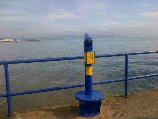Hoburne Devon Bay: Paignton view