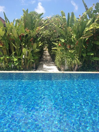 Ivory Resort Seminyak: The pool