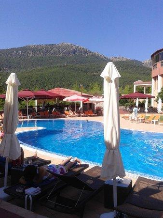 Mouzaki Palace Hotel & Spa: Η πισίνα