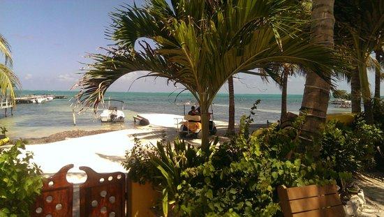 Seaside Cabanas: view